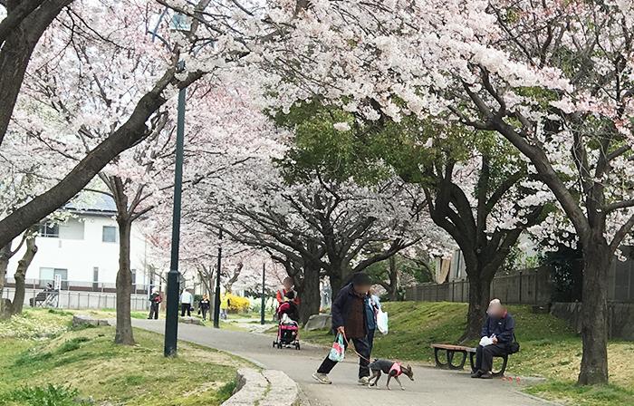 安川緑道公園